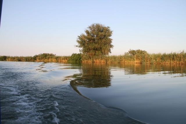 Спокойный Дунай по пути назад Фото: Борис