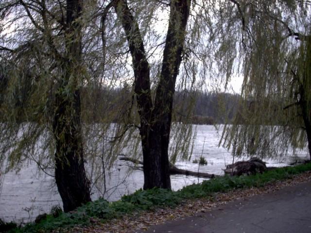 Озеро в Мельниках