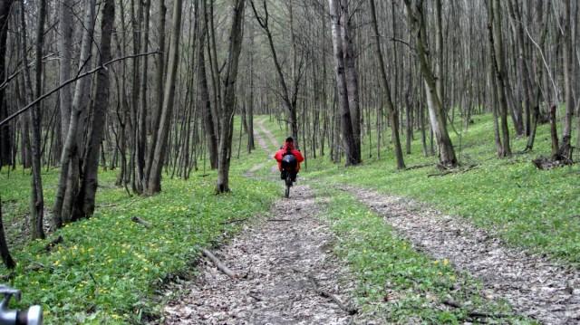 Сергій вирушив додому навпростець через ліс