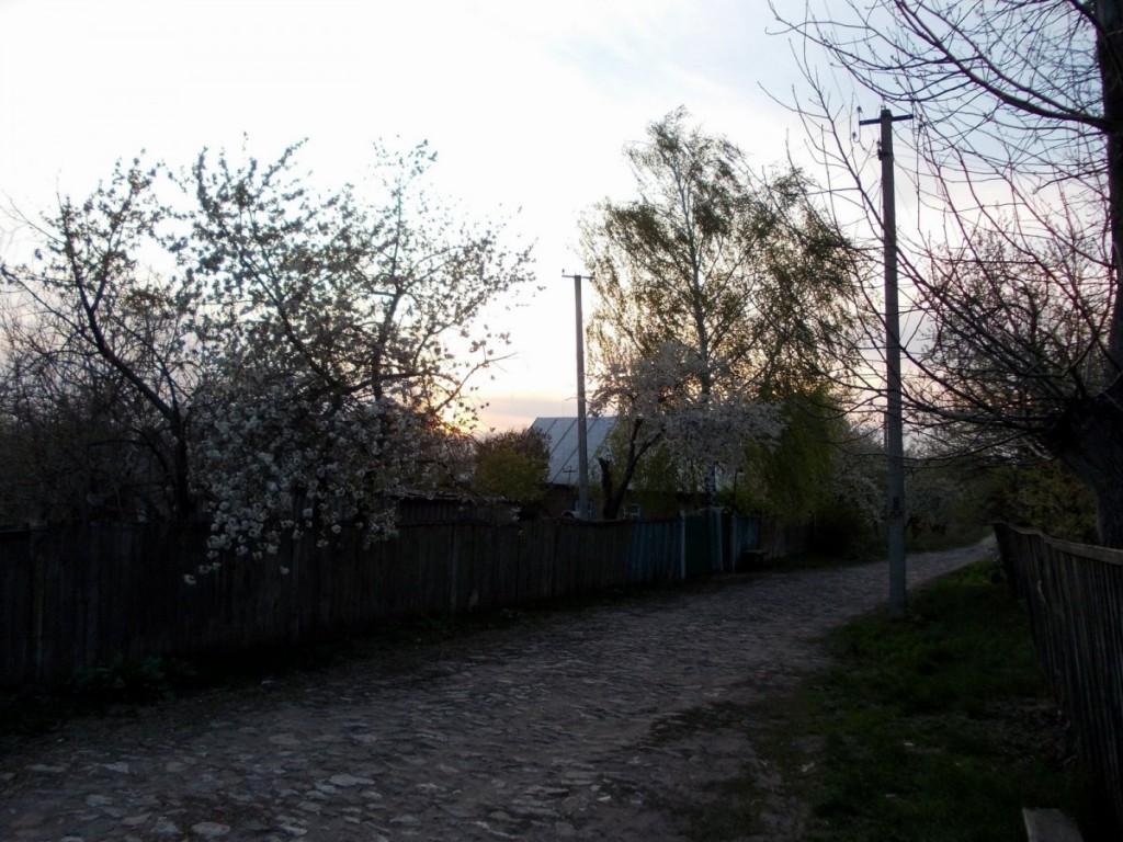 DSCN0489
